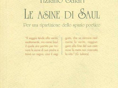 GIORGIO MOIO – Le asine di Saul di Tiziano Salari
