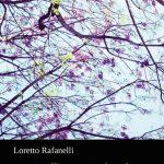 SOFÍA GAMBOA DUARTE, Loretto Rafanelli, i recinti del suo sguardo